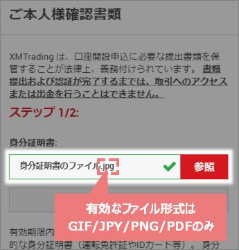 XM提出画像のファイル形式